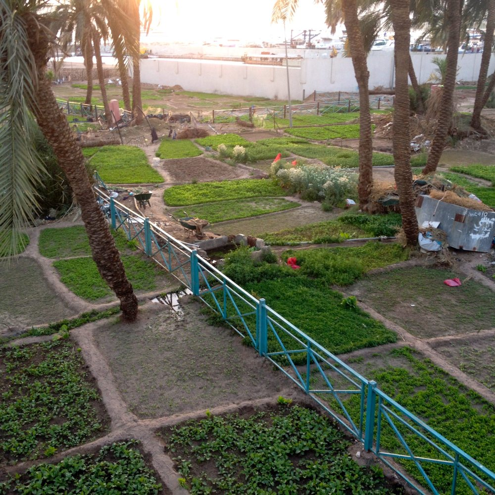 al-hafayeh-park-aqaba-jordan