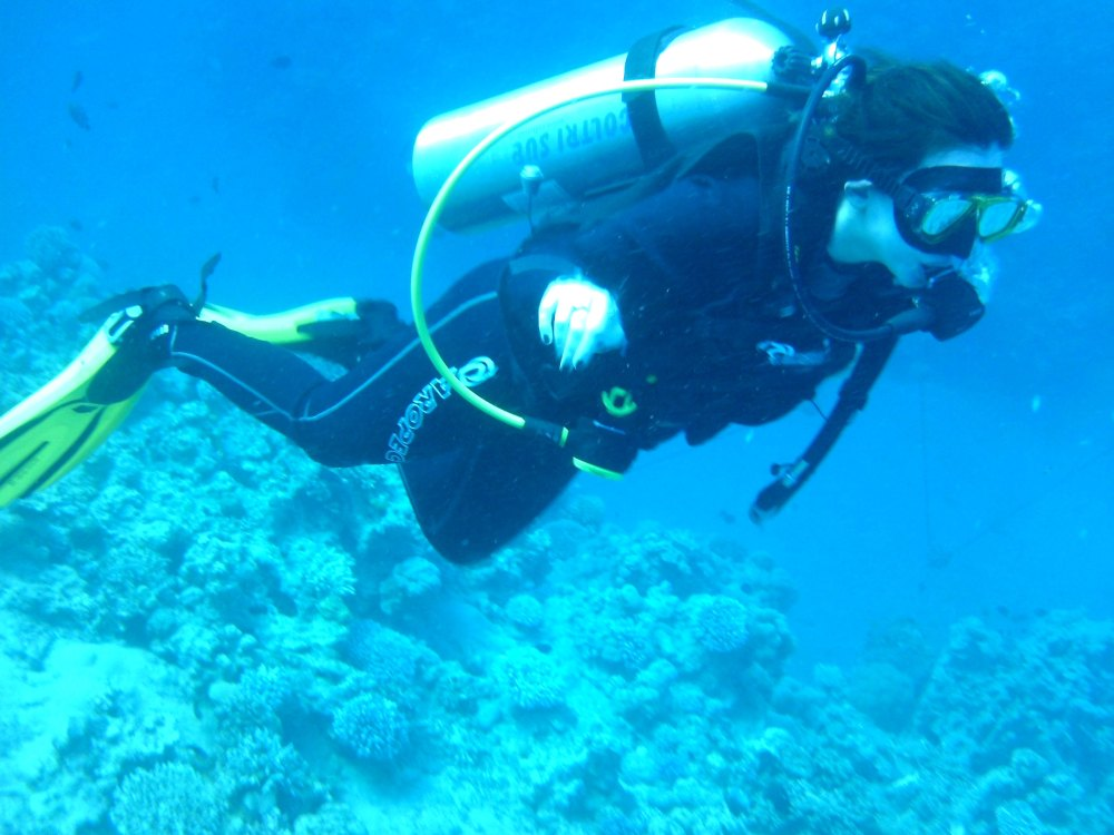 diving-in-red-sea-aqaba