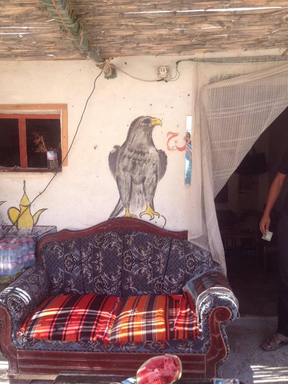 eagle-in-jordan