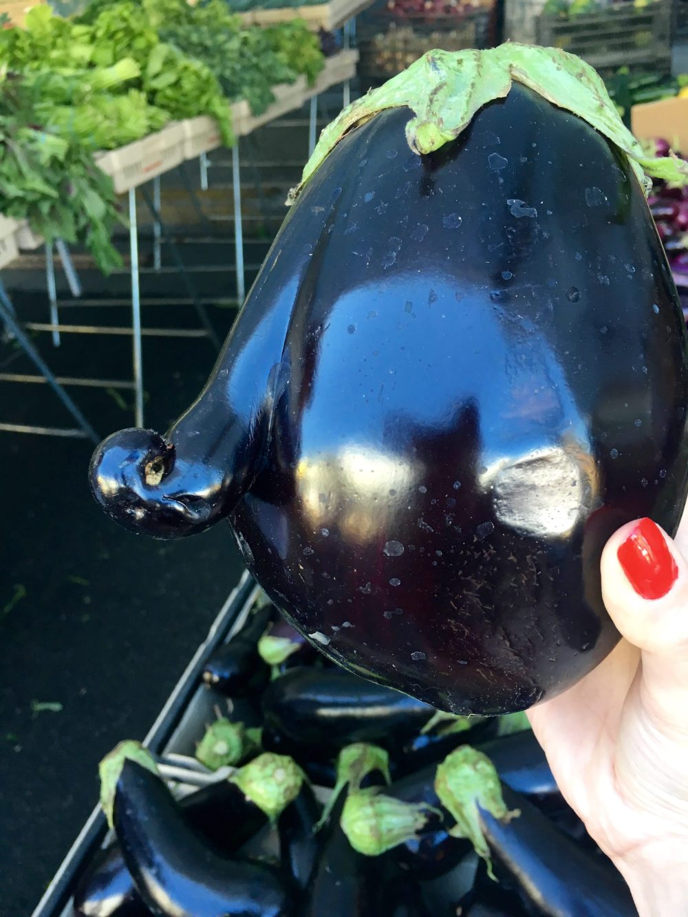 eggplant-with-nose-hollywood-farmers-market