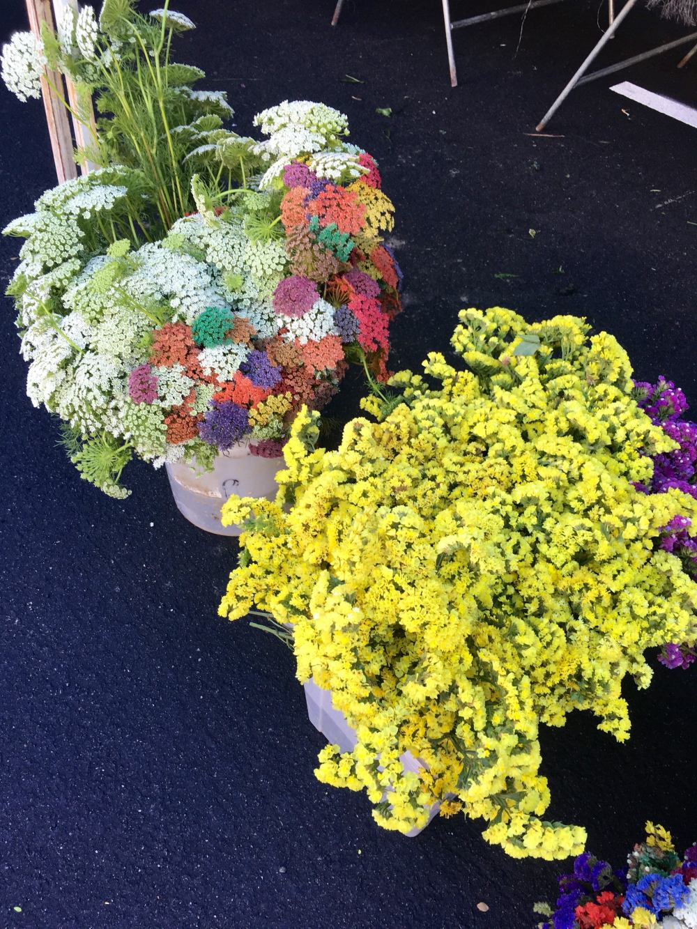 flowers-hollywood-farmers-market