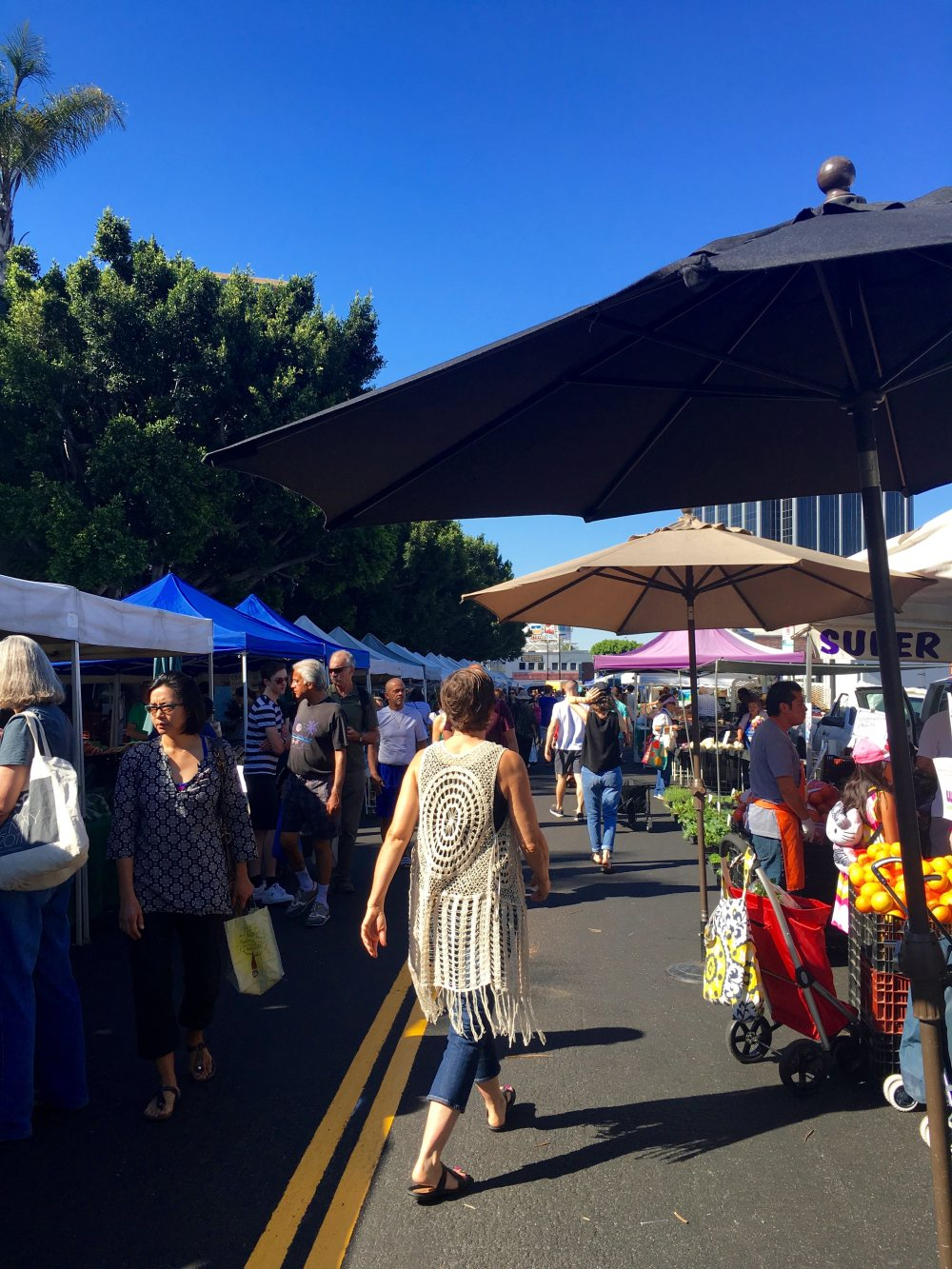 hollywood-farmers-market