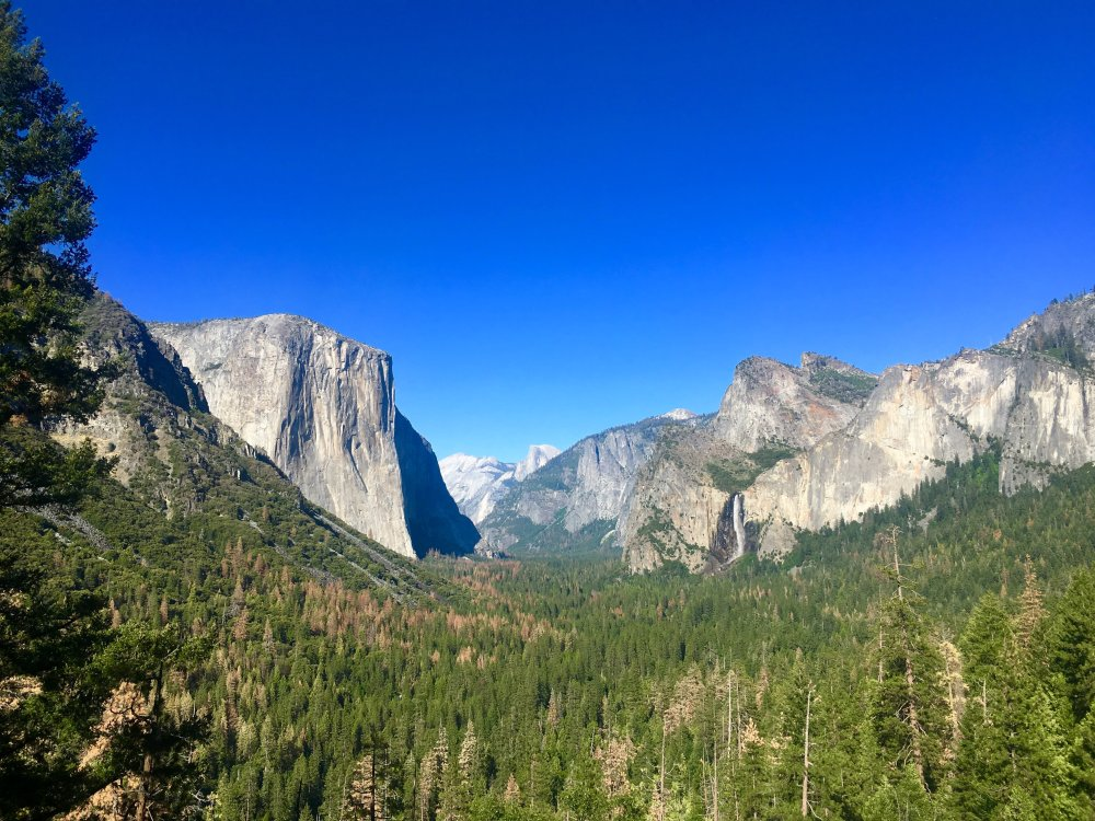 yosemite-olmsted-point-1