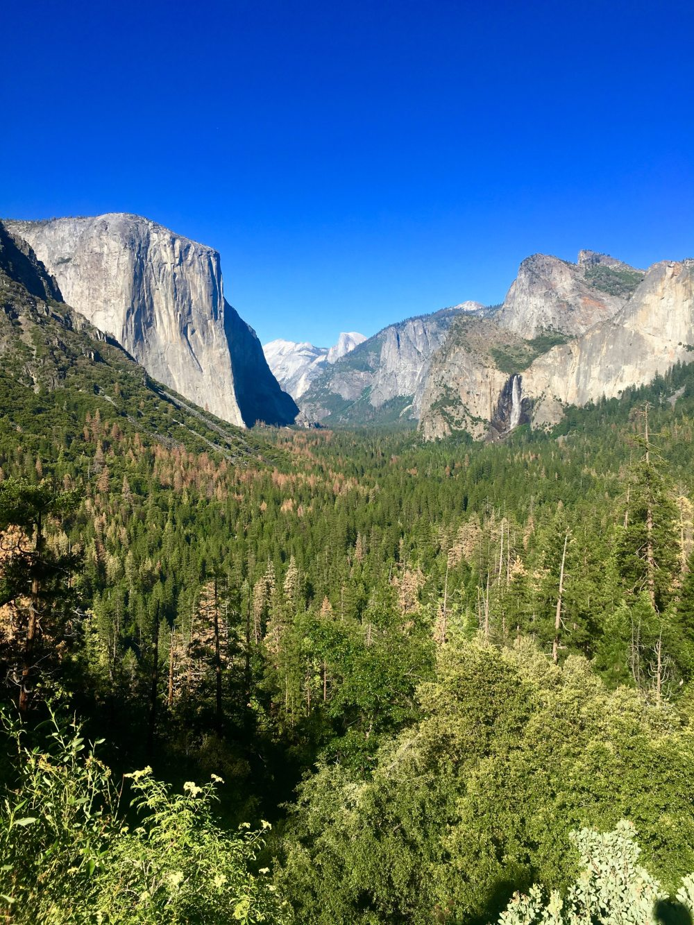 yosemite-olmsted-point